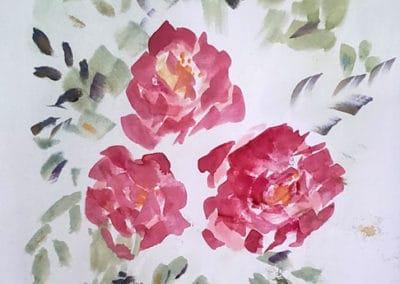 English Roses, age 14