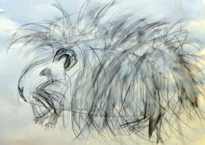 Guinea Pig Still Life, age 9