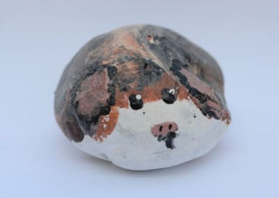 Hamster Rock, age 6