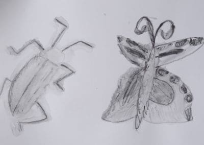 Insects, age 9
